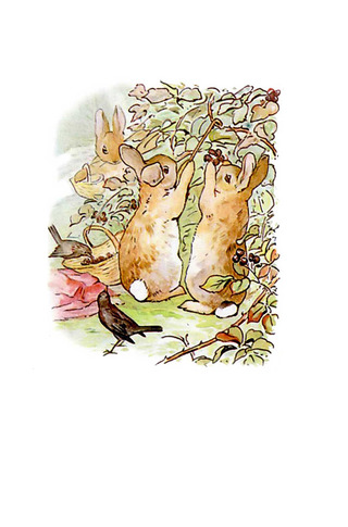 Small_320_1peter_rabbit_new_5