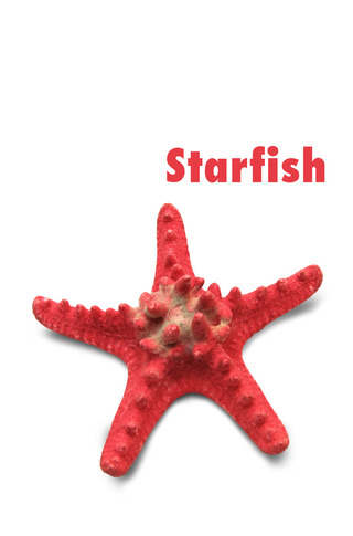 Small_320_001-starfish