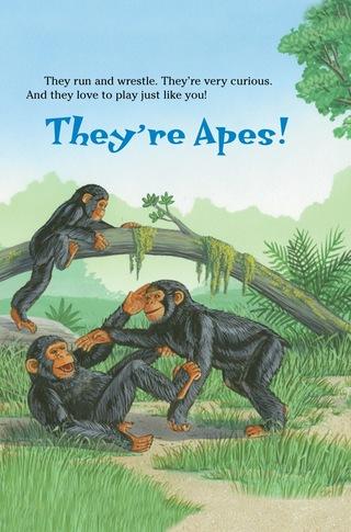 Small_320_1-ts-kia-apes