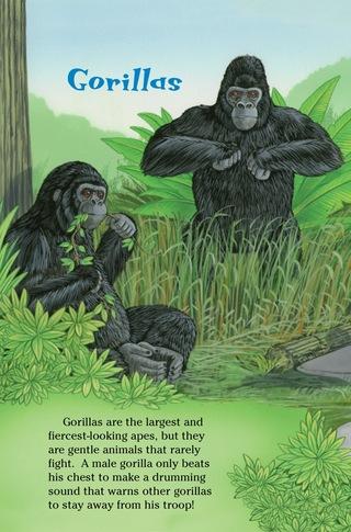 Small_320_5-ts-kia-apes