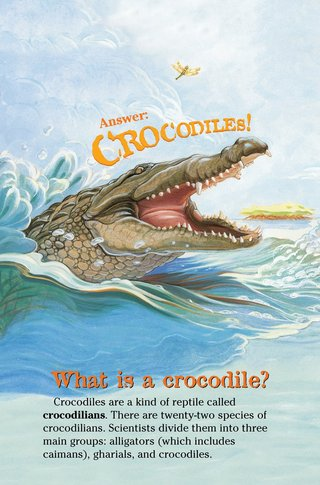 Small_320_3-crocodilesv2