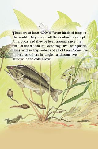 Small_320_1-kia-frogs-eferrer
