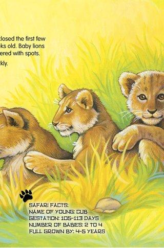 Small_320_4-safaribabies-tai