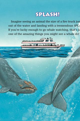 Small_320_1-kia-whales-farfaria-eferrer