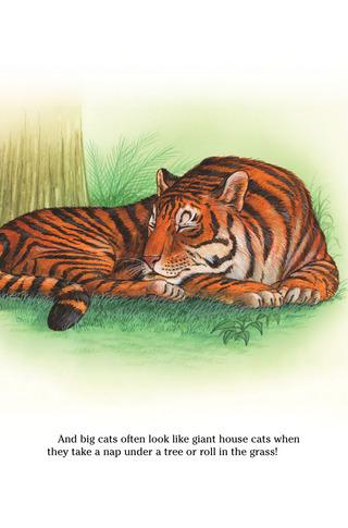 Small_320_2-page-2-final-kia-wildcats-farfaria-twinsisters-eferrer