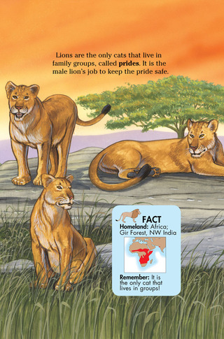 Small_320_4-page-4-final-kia-wildcats-farfaria-twinsisters-eferrer