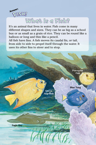 Small_320_3-page-3-final-kia-fish-farfaria-twinsisters-eferrer