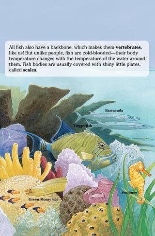 Small_320_4-page-4-final-kia-fish-farfaria-twinsisters-eferrer