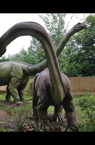 Small_320_2-final-abdo-dinosaurs-apatosaurus-ad