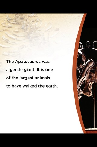 Small_320_3-final-abdo-dinosaurs-apatosaurus-ad