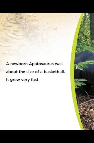 Small_320_9-final-abdo-dinosaurs-apatosaurus-ad