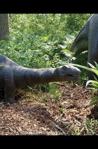 Small_320_10-final-abdo-dinosaurs-apatosaurus-ad