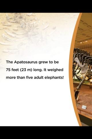 Small_320_11-final-abdo-dinosaurs-apatosaurus-ad
