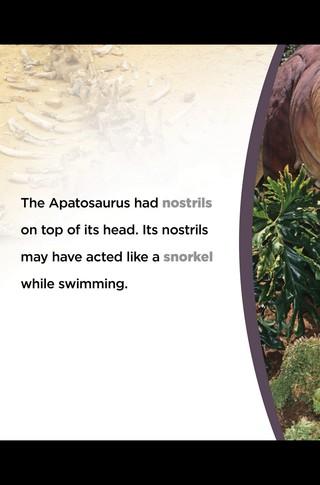Small_320_13-final-abdo-dinosaurs-apatosaurus-ad