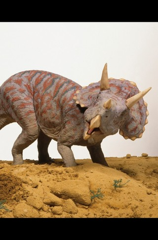 Small_320_2-final-abdo-dinosaurs-triceratops-ad