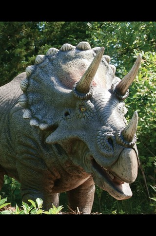 Small_320_4-final-abdo-dinosaurs-triceratops-ad