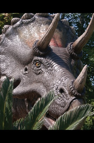 Small_320_6-final-abdo-dinosaurs-triceratops-ad