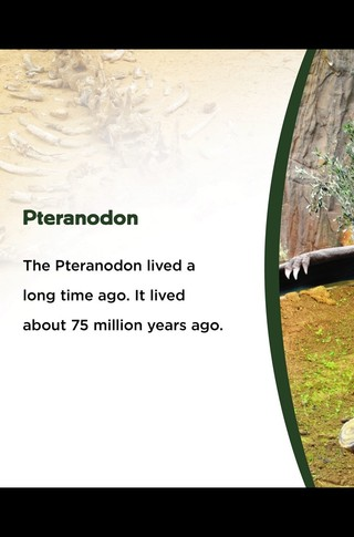 Small_320_1-final-abdo-dinosaurs-pteranodon-ad