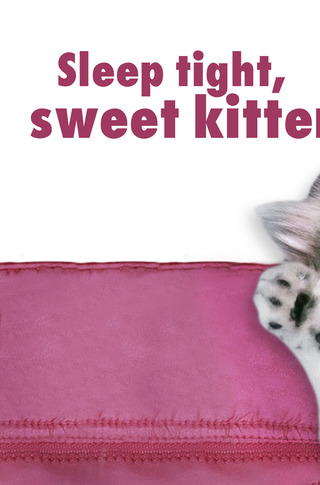 Small_320_3-page-3-final-sweetkitten-nightnightbabyanimals-eferrer