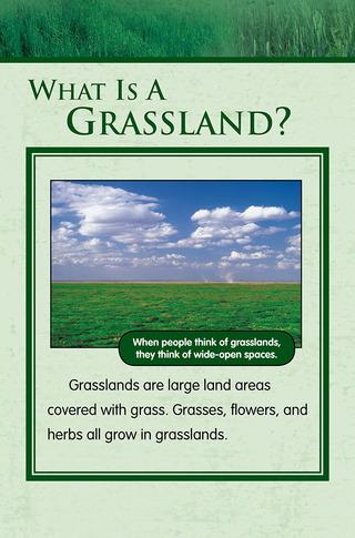 Small_320_1-final-habitat-grasslands-ad2