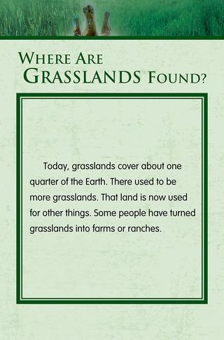 Small_320_3-final-habitat-grasslands-ad3