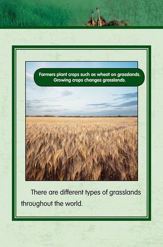 Small_320_4-final-habitat-grasslands-ad3