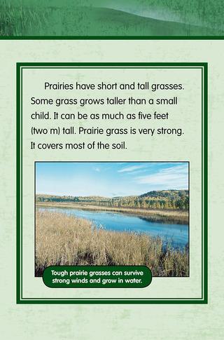 Small_320_6-final-habitat-grasslands-ad3