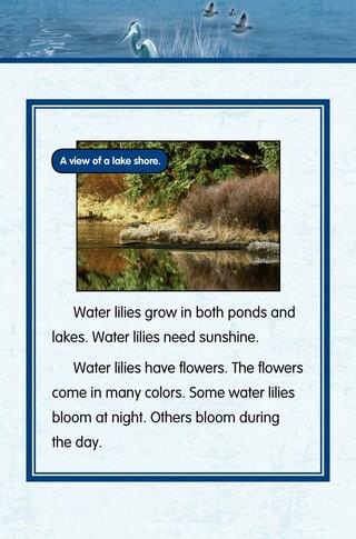 Small_320_7-final-habitat-lake_ponds-adc