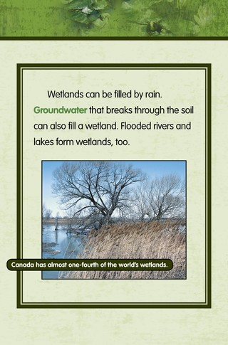 Small_320_2-final-habitat-wetlands-ad