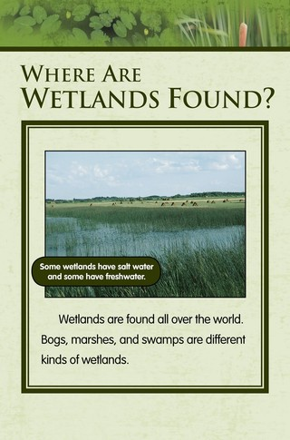 Small_320_5-final-habitat-wetlands-ad