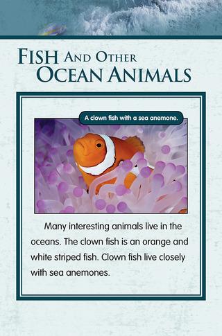 Small_320_7-final-habitat-oceans-ad2