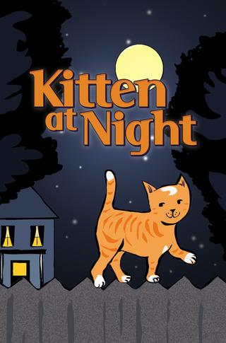 Kitten at Night