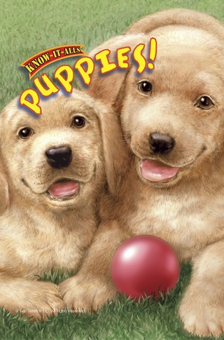 Know It Alls: Puppies