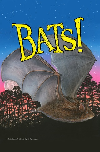 Know it Alls: Bats