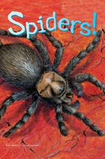 Know It Alls: Spiders