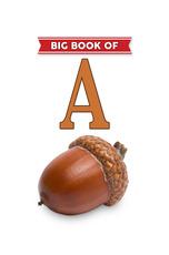 Big Book of A