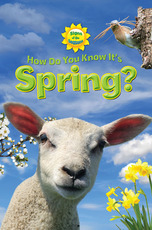 Signs of the Seasons: How Do You Know It's Spring?