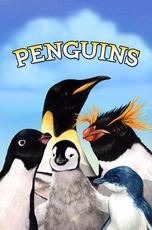 Penguins Photobook