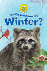 Signs of the Seasons: How Do You Know It's Winter?