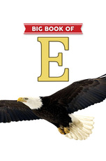 Big Book of E