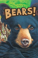 Know It Alls: Bears