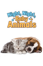 Night, Night, Baby Animals