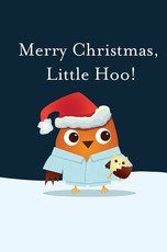 Merry Christmas Little Hoo!
