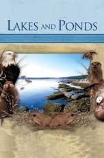 Habitats: Lakes and Ponds