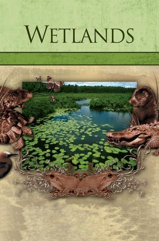 Habitats: Wetlands