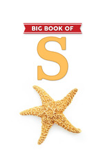Big Book of S