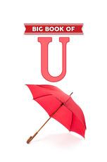 Big Book of U
