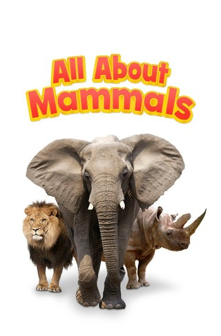 All About Mammals