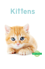 Baby Animals: Kittens